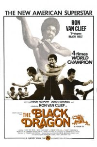The Death of Bruce Lee poster