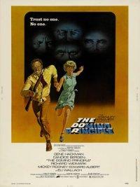 The Domino Principle poster