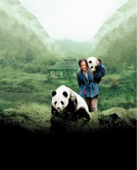 China: The Panda Adventure poster