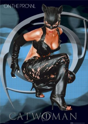Catwoman 480x674