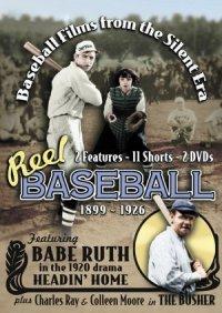 Negro Leagues Baseball poster