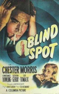 Blind Spot poster