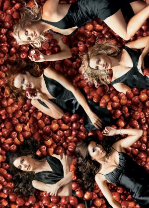 Desperate Housewives 2155x3000