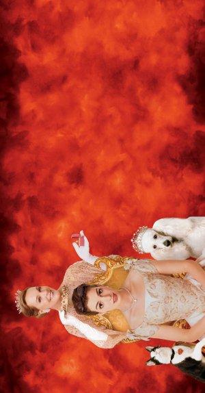 The Princess Diaries 2: Royal Engagement 2613x5000