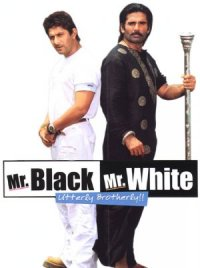 Mr. White Mr. Black poster