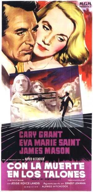 North by Northwest 700x1437