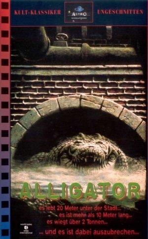 Alligator 691x1116