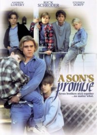 A Son's Promise poster