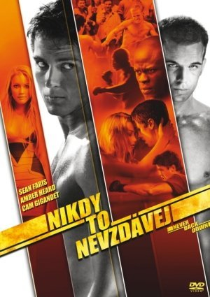 Never Back Down 300x425