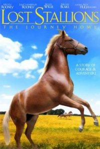 Lost Stallions: The Journey Home poster