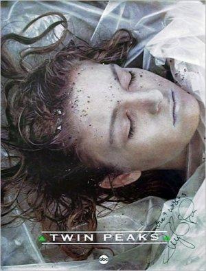 Das Geheimnis von Twin Peaks 402x528