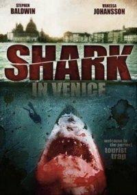 Shark in Venice poster
