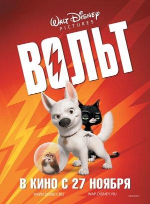 Bolt 1000x1364