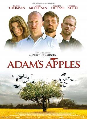 Ádám almái 3572x4896