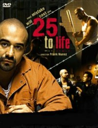 25 to Life poster