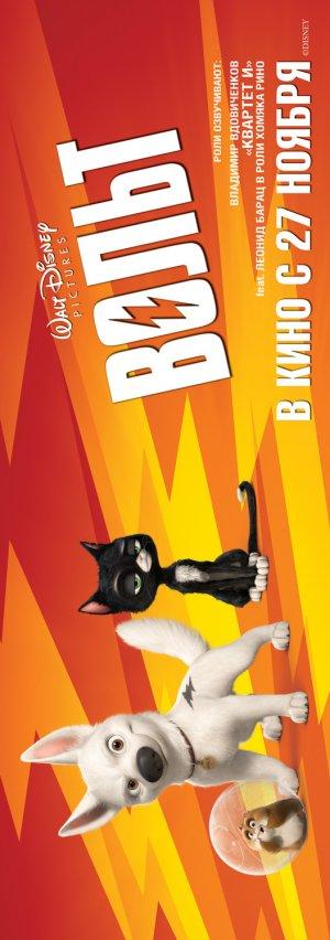 Bolt 527x1496