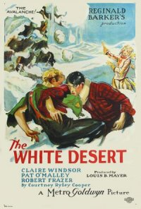 The White Desert poster