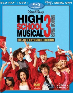 High School Musical 3: Senior Year 536x678
