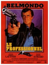 The Professional poster