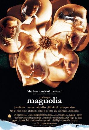 Magnolia 800x1170