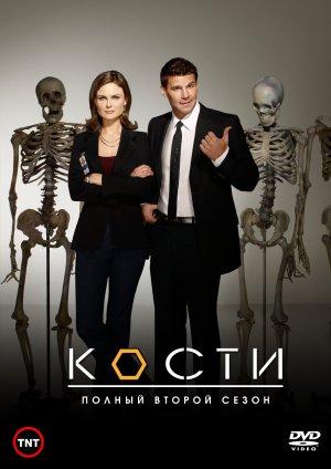 Bones 1013x1433