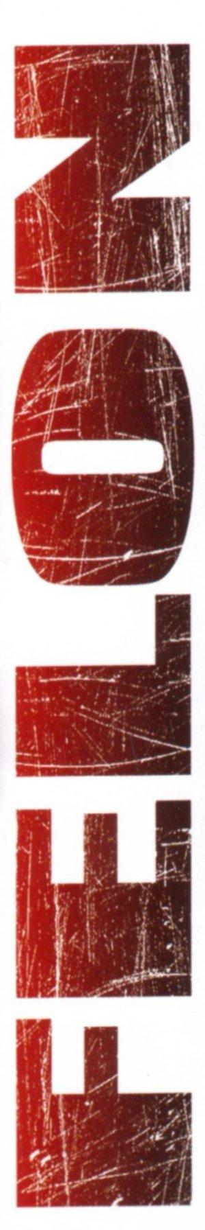 Felon 304x1816