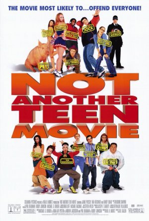 Not Another Teen Movie 580x862