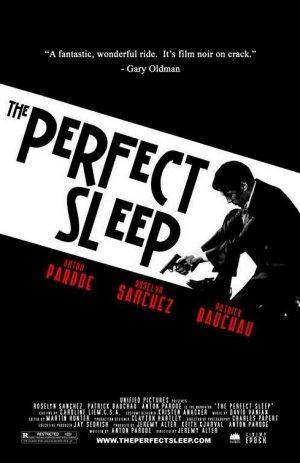 The Perfect Sleep 489x755