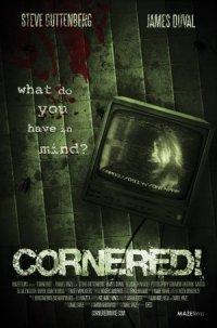 Cornered! poster