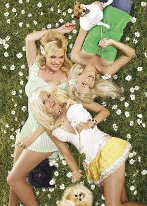 The Girls Next Door 515x720