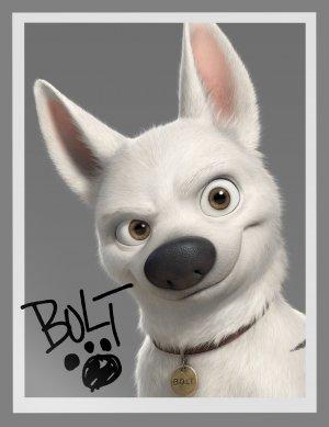 Bolt: Ein Hund für alle Fälle 1893x2457