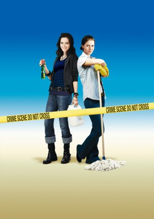 Sunshine Cleaning textless poster. Copyright by respective production studio
