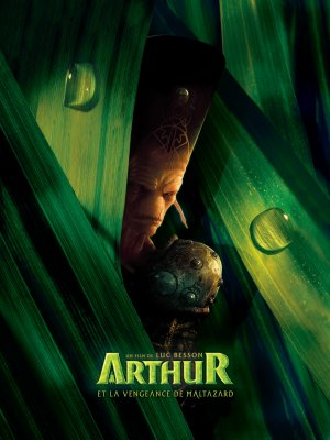 Arthur et la vengeance de Maltazard 2250x3000