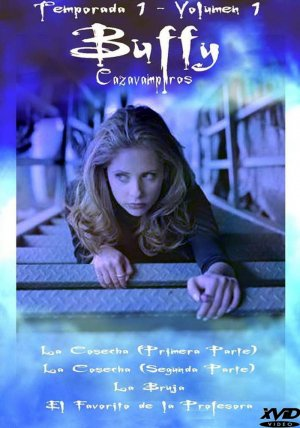 Buffy the Vampire Slayer 700x999