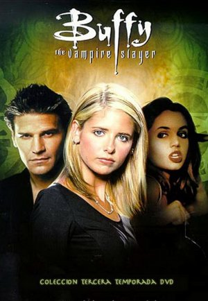 Buffy the Vampire Slayer 690x998