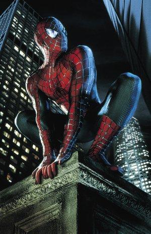 Spider-Man 2480x3826