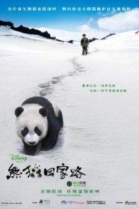 Xiong mao hui jia lu poster