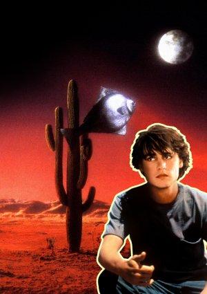 Arizona Dream 1536x2175