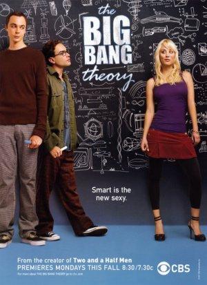 The Big Bang Theory 500x689