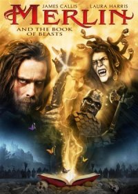 Merlin und das Schwert Excalibur poster