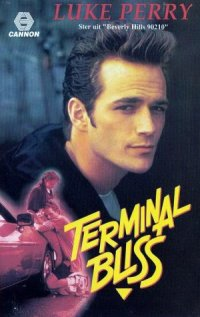 Terminal Bliss poster