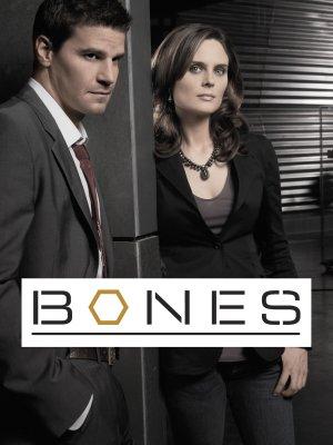 Bones 2925x3900