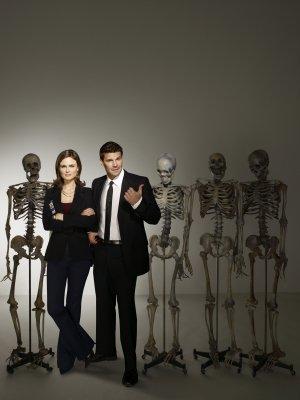 Bones 2928x3900