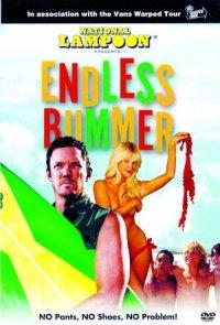 Endless Bummer poster