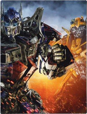 Transformers: Die Rache 748x985