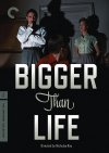Bigger Than Life Cover