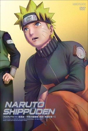Naruto Shippuden 942x1399