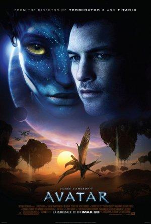 Avatar 800x1185
