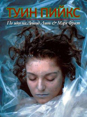 Das Geheimnis von Twin Peaks 415x555
