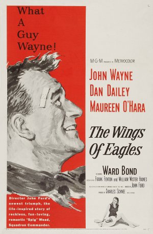 The Wings of Eagles 1960x3000